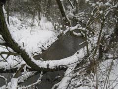 rzeka_1.jpg