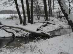 rzeka_4.jpg
