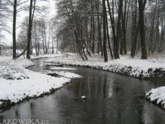 rzeka_3.jpg